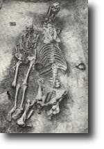Pohřeb muže i s koněm